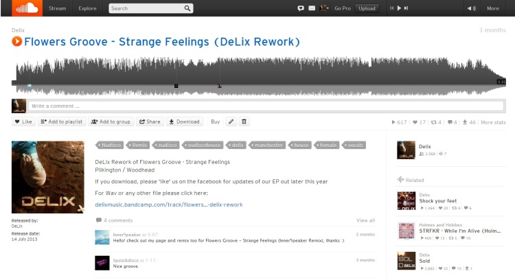 21st July, 2013: The DeLix rework of the Flowers Groove track 'Strange Feelings' Available for FREE download!